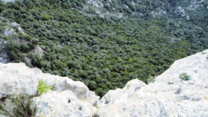 Blick vom Castell d'Alaró, Mallorca