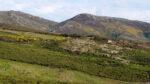 Prado (Covelo - Pontevedra): Serra do Suído