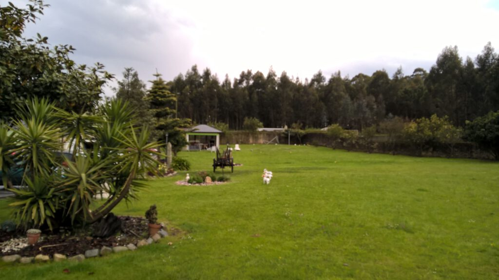 """Hostal """"El Pinar"""", Ribadeo (Lugo)"""