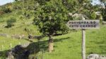 Fornelos de Montes - A Laxe (Pontevedra): Fervenza do Coto Grande