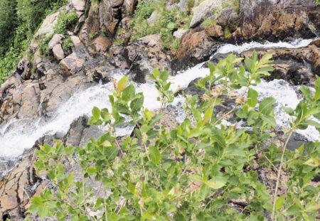 Špindlerův Mlýn – Labský vodopád Spindlermühle – Elbfall