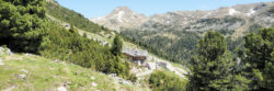 Titelbild Getrumalm in Reinswald (Sarntal, Südtirol, Italien)
