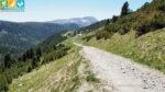Blick auf die Getrumalm am Wanderweg 7 zum Latzfonser Kreuz (Sarntal, Südtirol, Italien)
